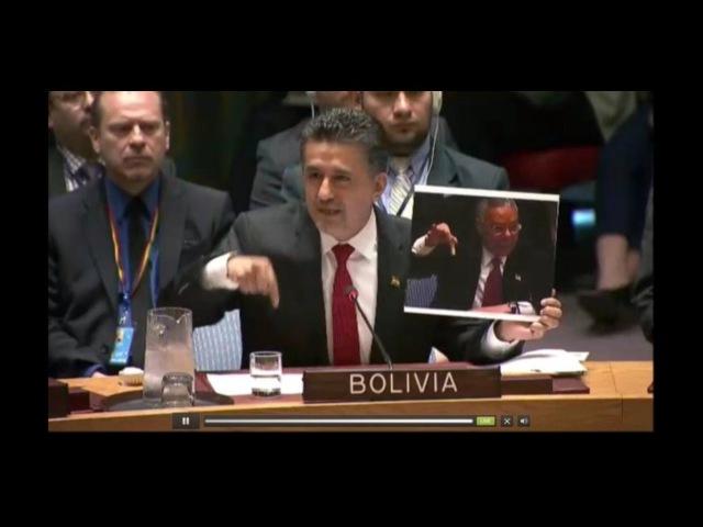 Постпред Боливии в ООН вспомнил Колина Пауэлла с пробиркой, видео 7.04.2017