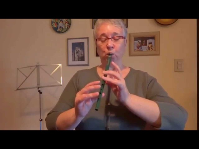 The Harvest Home Hornpipe on the Tinwhistle