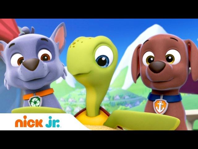 Щенячий патруль 1 сезон 2 серия Спасение морских черепах Щенки и очень большой малыш