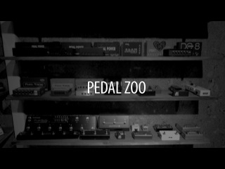 Видеоэкскурсия по шоуруму Pedalzoo!