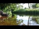 Река. Природа. Пение птиц. Журчание воды. Релакс. Медитация. Йога. Сон. Место силы. Для души
