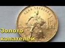 СКОЛЬКО СТОИТ ЗОЛОТО КОПАТЕЛЕЙВ поисках Золота и Старины!