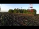 Поездка в Мичуринск 2. Усадьба Снежковых, заброшенная школа и многое другое