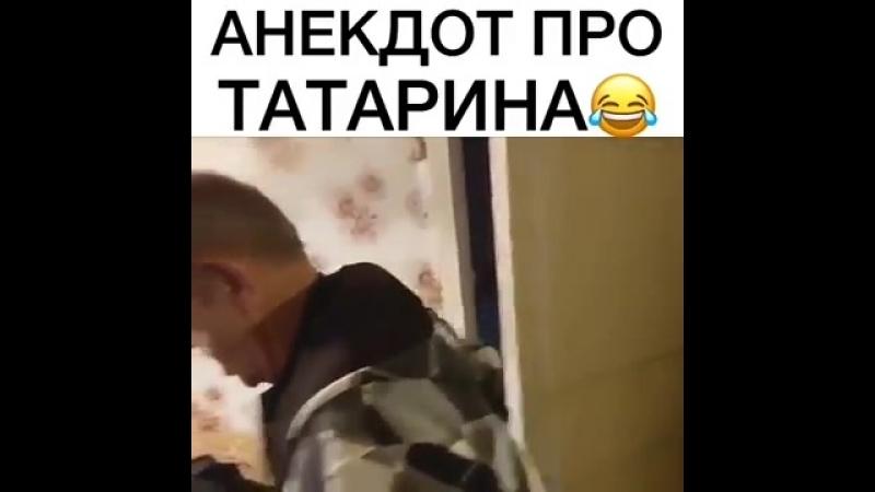 Pro tatarina