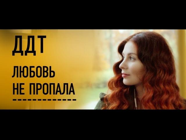 ДДТ Любовь не пропала Official Music Video