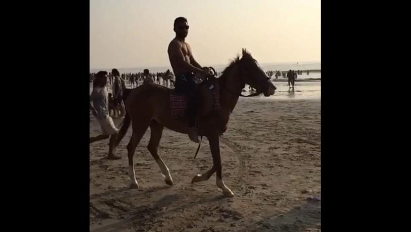 HorseLove » Мир HD Tv - Смотреть онлайн в хорощем качестве