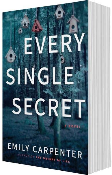Every Single Secret  A Novel - Emily Carpenter
