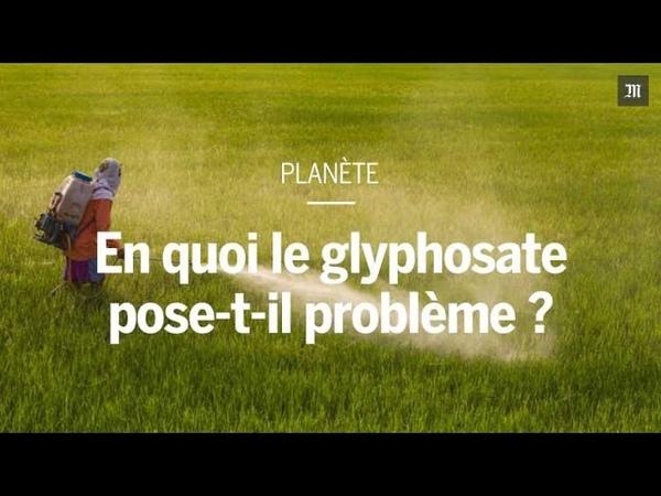 En quoi le glyphosate pose-t-il problème ?