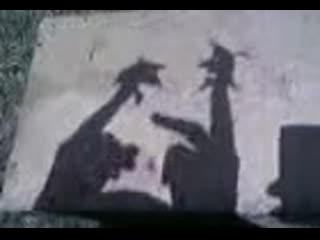 очень старое видео про ПРИКОЛ С ТЕНЬЮ Гоги и Гиви играют в карты