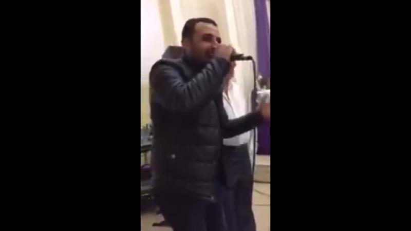 Qeifi