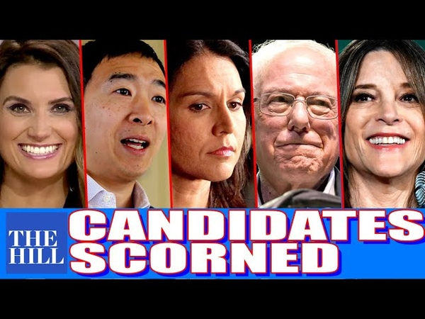Krystal Ball: Why the media scorns Yang, Tulsi, Bernie, Marianne