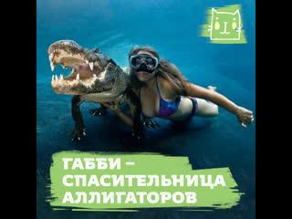 Девушка дружит с крокодилами