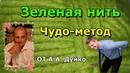 🎁Лечение спины зеленой ниткой /Школа Кайлас Андрей Дуйко видео бесплатно🎊