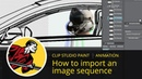 How to Import an Image Sequence (Clip Studio Paint Animation)