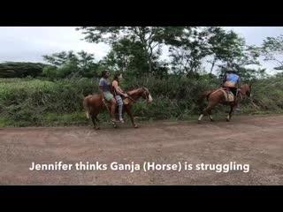 Fiji horse ride in rural nadi