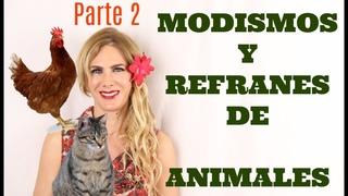 Modismos y refranes de animales. Parte 2. Idioms with animals in Spanish. Part 2.
