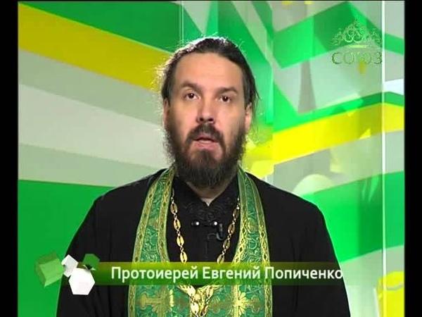 30 апреля Прп Засима игумен Соловецский