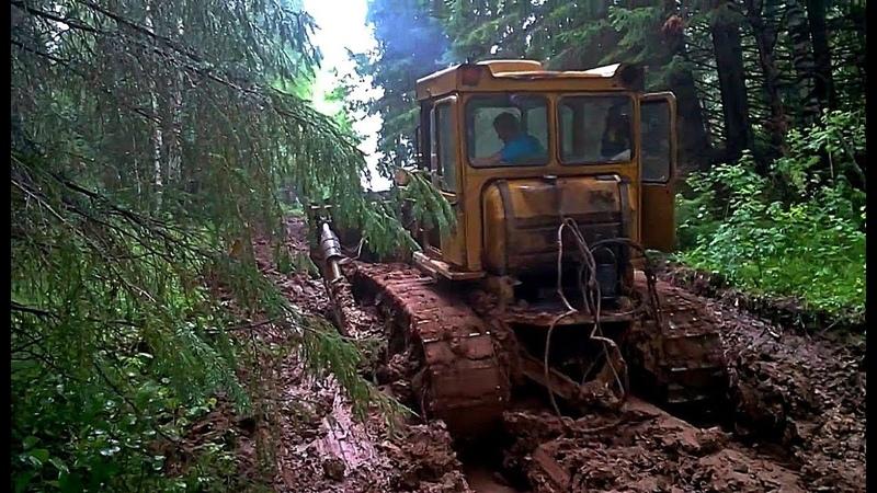 Тракторы ДТ 75 Т 74 Т 130 в грязи и снегу Гусеничный трактор на бездорожье что танк в бою