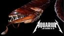 Страшные РЫБЫ МУТАНТЫ и УРОДЦЫ живущие в наших аквариумах Закрепленные генетические уродства УЖС