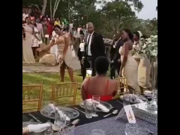 Wedding vibes in Zimbabwe 🇿🇼🔥🔥