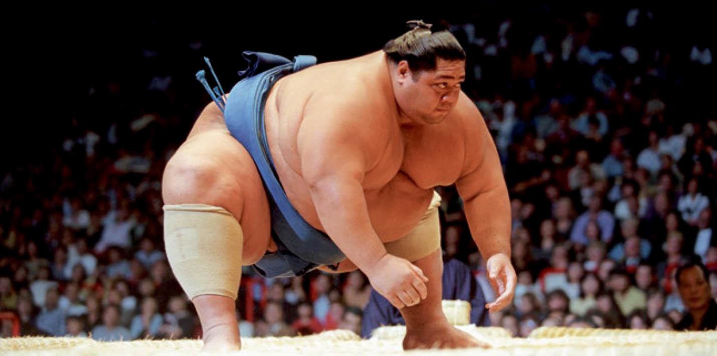 Топ фактов о сумо | Пикабу