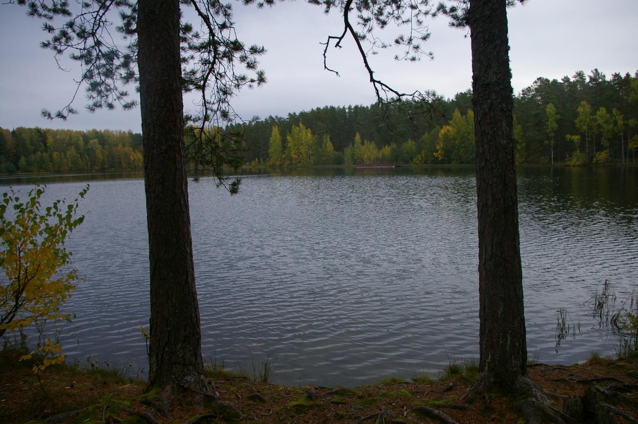 Щи в Будогощи. Необычный поход по чистейшим озерам среди красивых лесов.