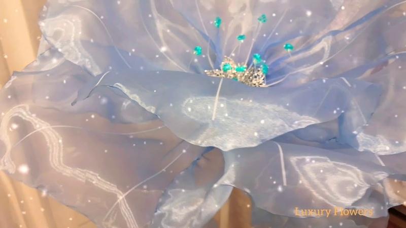 Цветок Снежной королевы ИЗОЛЬДА