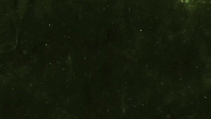 1080_30_16.68_Dec132019 (1).mp4
