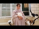 This woman provides safe haven to hundreds of abandoned cats and dogs in Oman
