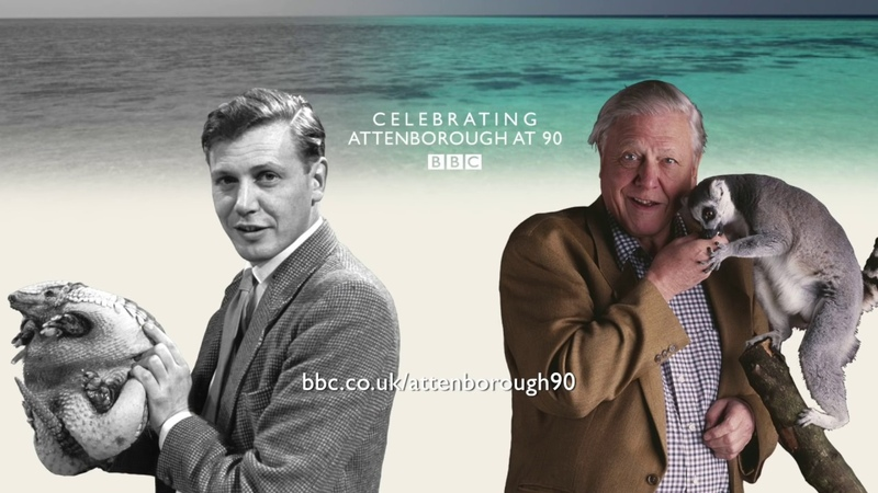 Interview with David Attenborough Attenborough at 90 BBC