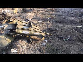 Самолёт украинских авиалиний разбился в Иране. Прямая трансляция из аэропорта Борисполь