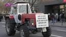 Wir haben es satt 18.01.2020 Berlin Traktoren - Schlepper Konvoi am Reichstag