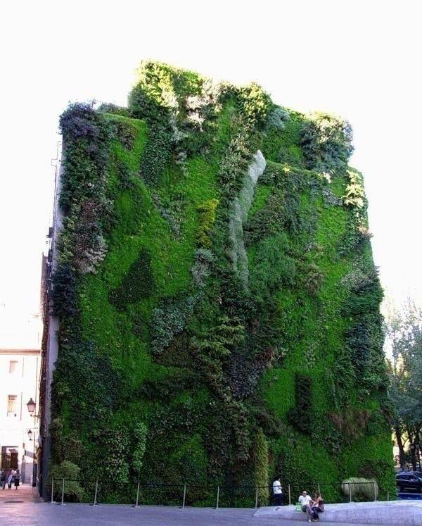Висячие сады Патрика Бланка.