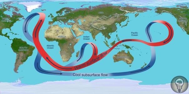 Воде требуется около тысячи лет, чтобы обойти всю Землю.