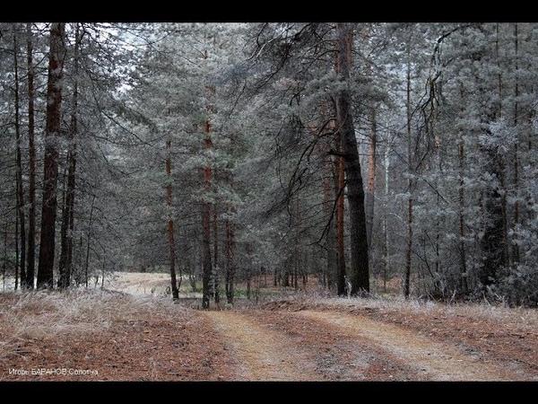 РЯЗАНСКОЕ ПРЕДЗИМЬЕ Фото Игоря Баранова Рязань музыка М А Балакирева