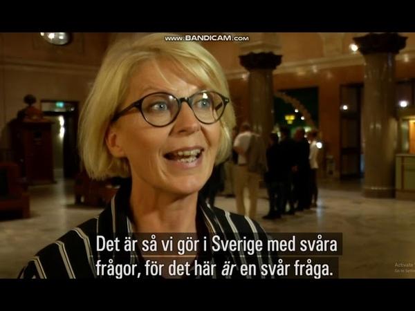"""Elisabeth Svantesson """"Ett sätt att sexualisera små flickor"""""""
