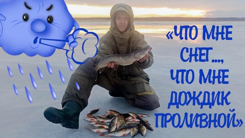 Ловля окуня на блесну Щука на жерлицы Зимняя рыбалка Рыбалка на Ладоге