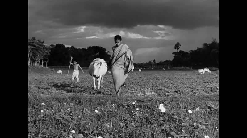 The Apu Trilogy Satyajit Ray Pather Panchali Aparajito Apur Sansar Trailer