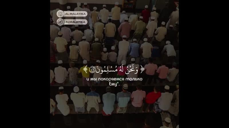 Abdul Rohman Mosaad Surat « 29 - al' Ankabut »