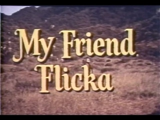 My Friend Flicka 32 of 39 - The Old Champ