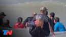 Desesperado intento de salvar a 7 orcas varadas en Mar Chiquita