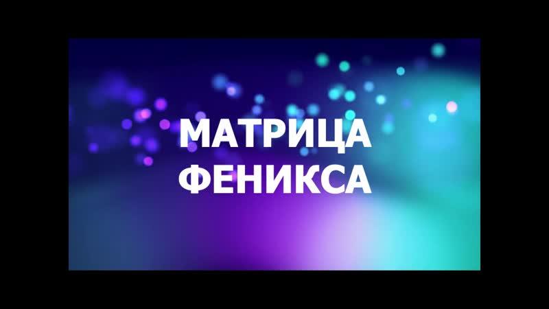 МАТРИЦА ФЕНИКСА