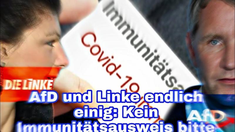 AfD und Linke endlich einig Kein Immunitätsausweis bitte