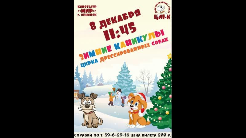 Бесплатные билеты на концерт от Цирка дрессированных собак который состоится 8 Декабря в 11 45 выигрывают