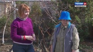 Садоводы.  Многолетники и первые работы в саду