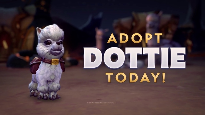 Adopt Dottie and Support Make-A-Wish® and WE!