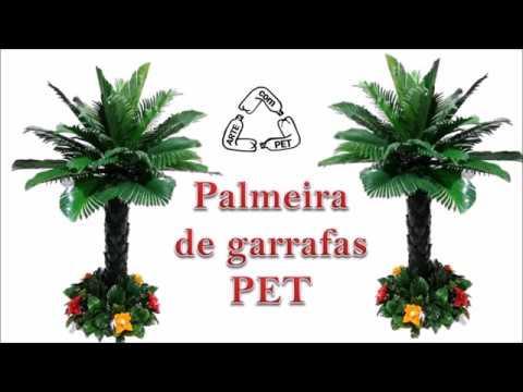 PALMEIRA de GARRAFAS PETTamanho médioARTE com PETDIY