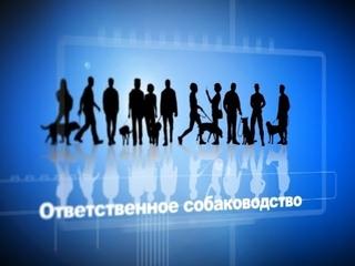 Армавирский городской клуб служебного собаководства приглашает желающих в Школу четвероногих друзей