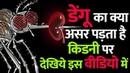 डेंगू का क्या असर पड़ता है किडनी पर | Kidney Treatment in Ayurveda
