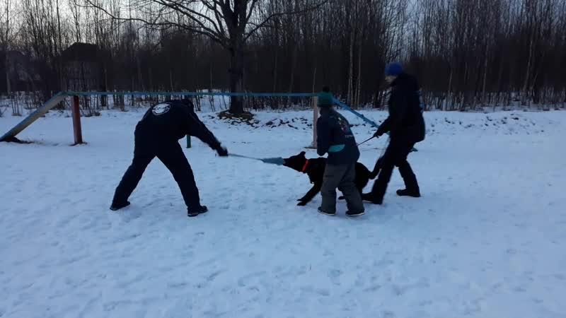 Хельхаус Февронья тренинг с Леонидом Боднаром